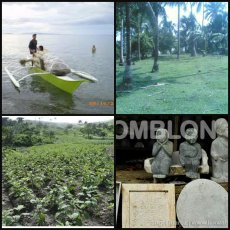 Minerals (marble, coconuts, farms and fishing are the main aggricultural business of Romblon