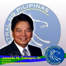 amando-m-tetangco-jr-of-bsp