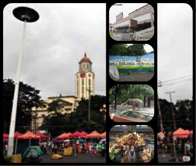 Manila Zoo, Manila City Market, Bonifacio Shrine. Orange Tents and Lawton Park-n-Ride, these are properties may be use to generate tax,  good commercial areas that can generate cash for the city of Manila..